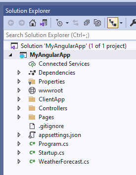 Angular project structure in the Solution Explorer